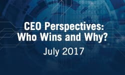 CEO Perspectives: Who Wins and Why?